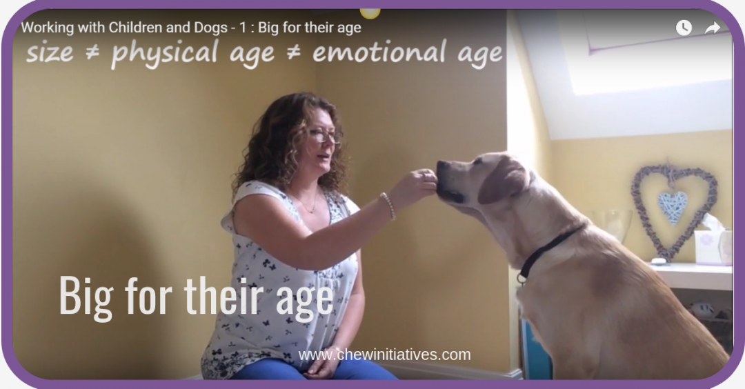 Working with Children and Dogs -1 : Big for their age